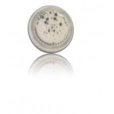 Bec Led alb LumiPlus 2.0 Astralpool 43412